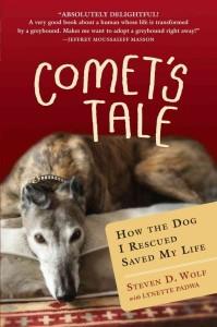 Comet's Tale